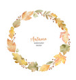 watercolor round frame leaves and vector image vector image