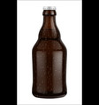 beer bottle glass isolated on white background vector image