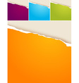 4 colored ripped papers vector image