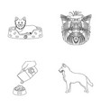 a dog in a lounger a muzzle of a pet a bowl vector image