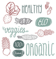 Eco hand drawn lettering and veggies vector image