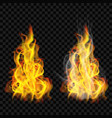 fire flame with smoke and without vector image vector image