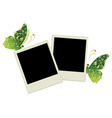 Two photo frames with butterfly decoration vector image vector image