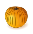 Orange pumpkin icon Halloween symbol vector image
