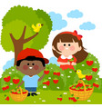 children picking strawberries vector image vector image