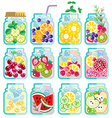 Collection of Infused water with mixed fresh fruit vector image