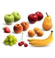 fruits realistic set vector image vector image