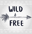 hand drawn arrow with feathers and lettering wild vector image vector image