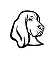 head a basset hound or scent hound side view vector image vector image