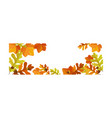 autumn background with space for text banner vector image vector image