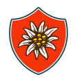 edelweiss shield flower symbol alpinism alps vector image vector image