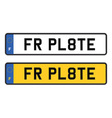 france number plate vector image vector image