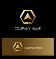gold triangle arrow navigation logo vector image vector image