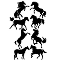 Silhouettes of horses vector | Price: 1 Credit (USD $1)