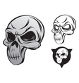 single skull vector image vector image