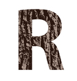bark letter R vector image vector image