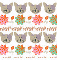 cat animal background design cute picture for vector image