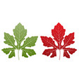 green and red leaf vector image