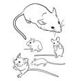 mice line art 01 vector image vector image