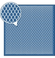 Wire Mesh background vector image vector image