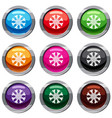 flower set 9 collection vector image