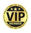 VIP Member Golden Label vector image