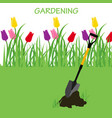 concept of gardening vector image vector image