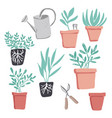 gardening elements vector image