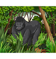 Gorilla living in the jungle vector image