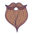 male beard cartoon vector image vector image