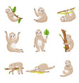 set of cute sloths in different poses and various vector image vector image