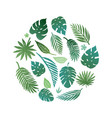 summer tropical paradise beach vector image vector image