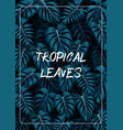 tropical leaves background with jungle plants vector image vector image