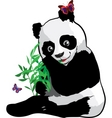 young panda with a butterfly vector image
