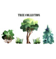 a collection of handmade trees watercolor vector image