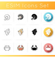astrological signs icons set vector image