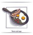 fried eggs with bacon in a frying pan vector image vector image