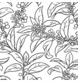 osmanthus seamless pattern vector image