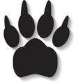 Paw print on white background vector image vector image