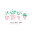 potted flowers vector image