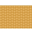 Seamless braided background Wicker straw Woven vector image vector image