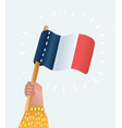 vive la france greeting card vector image vector image