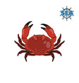 crab in cartoon style on a white background vector image vector image