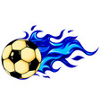 isolated soccer ball football ball vector image