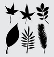 leaves nature silhouette vector image