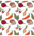 seamless background of the ripe roots crops vector image