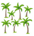 set of different tropical palm trees vector image