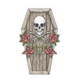 skull with bones and roses on coffin lid vector image vector image