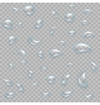 water drop on light gray background eps 10 vector image
