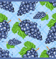 watercolor grapes seamless pattern watercolor vector image vector image
